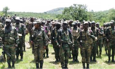 Benguela acolhe exercícios militares da CPLP