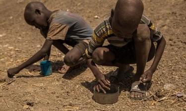 Fome severa põe em risco sete milhões de pessoas