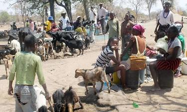 População precisa de 30 mil toneladas de alimentos por mês