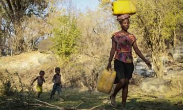 Cerca de 38 mil crianças correm risco de vida por malnutrição