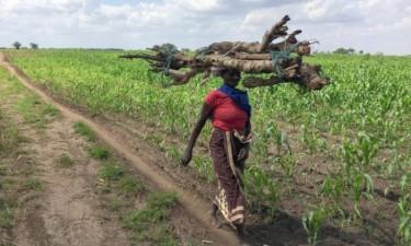 Moçambique nos dez países que mais ajudam os agricultores