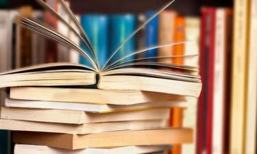 Plágio anula prémio literário jardim do livro infantil