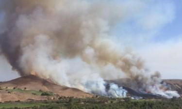 Queimadas deixam mais de 40 famílias ao relento