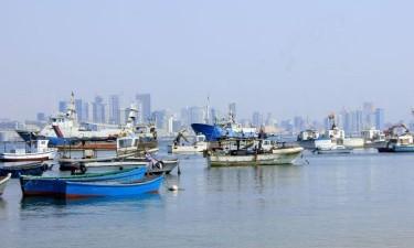 Peixes na Baía de Luanda morreram por asfixia
