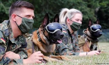 Namíbia vai utilizar cães para detectar covid-19
