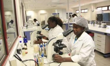 Diplomata defende formação contínua dos quadros angolanos