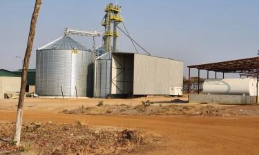 Agricultura inteligente num país de fome