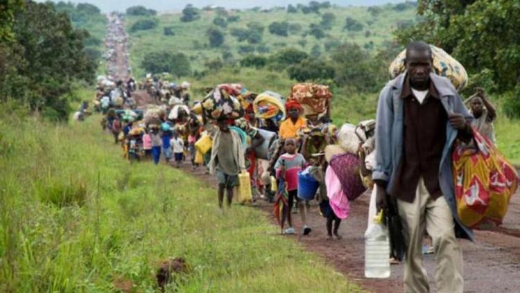 Angola conta com cerca de 70 mil refugiados e requerentes de asilo