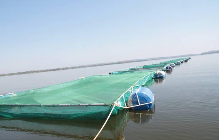 Centro de pesca do Bengo pode ser concluído em Abril