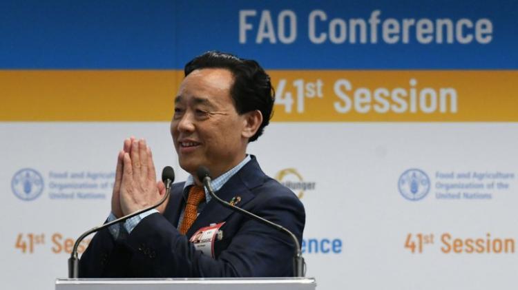 Chinês Qu Dongyu eleito director-geral da FAO
