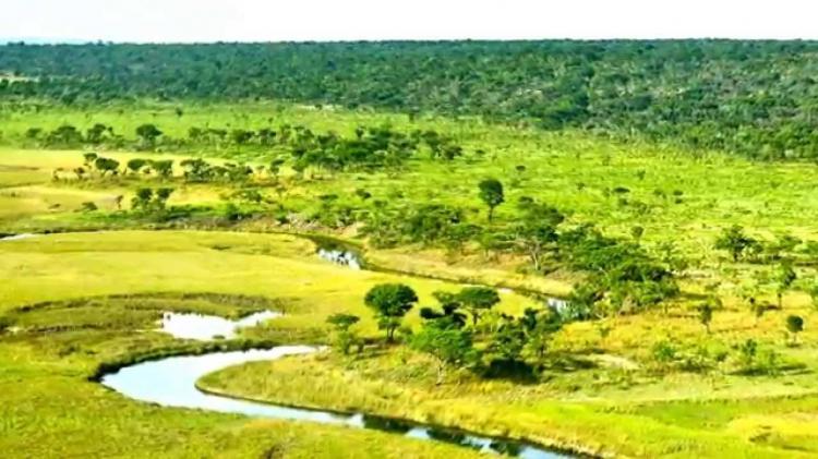 Governo investe 60 milhões na remoção de minas na bacia do Okavango