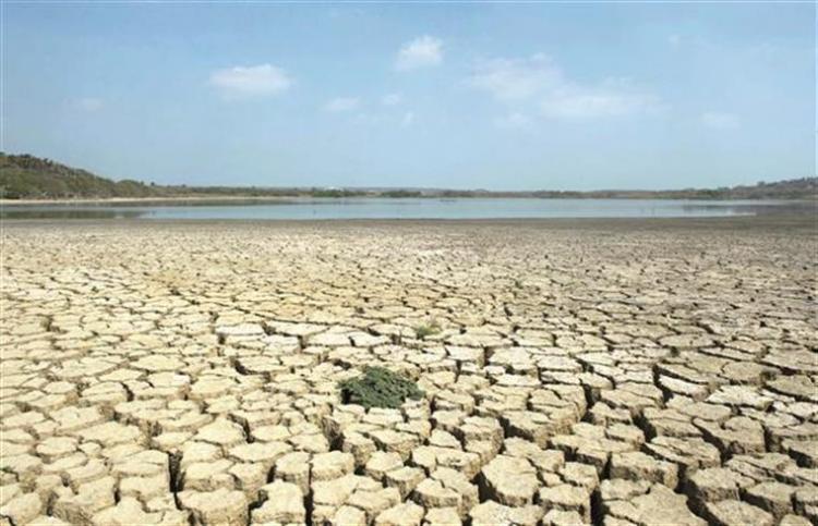 Relatório  revela consequências dramáticas do aquecimento global