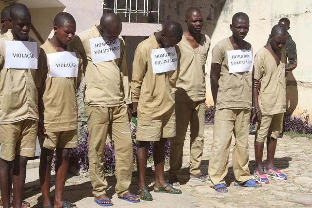 Detidos supostos vendedores de carne de burro