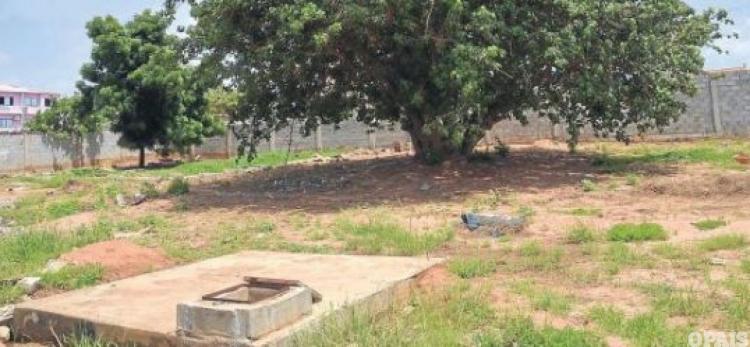 Duas vizinhas mortas e colocadas na fossa