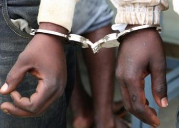 Detidos homens por aliciar crianças a furtar