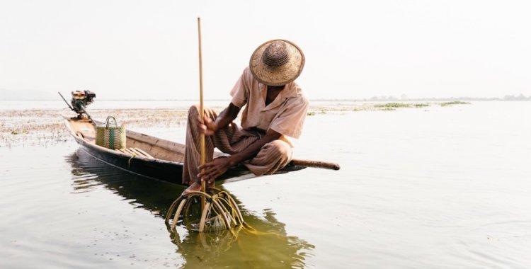 Cooperativas com baixa na pesca artesanal
