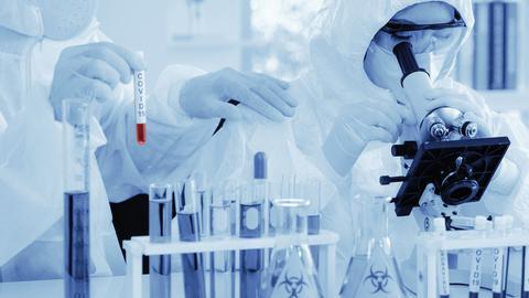 Médicos Sem Fronteiras queixam-se de testes caros e mal distribuídos