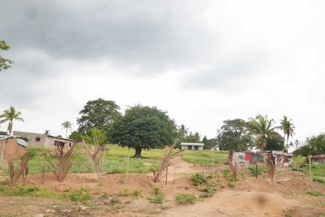 Kuenda é lançado no Icolo e Bengo