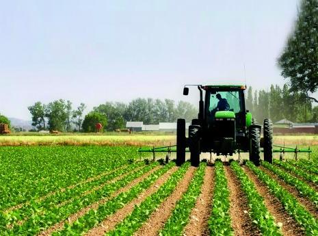 Fazendeiros têm 15 dias para legalizar terrenos