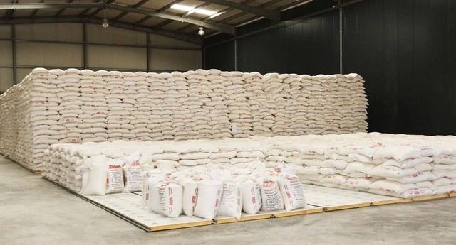 Angola vai duplicar produção de farinha de trigo