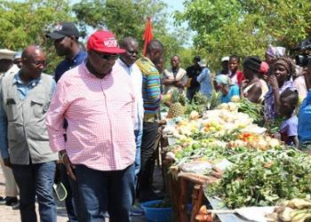 Feira de Produção Agrícola prevê reunir 40 cooperativas