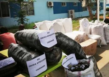 Matala vai criar brigadas contra consumo de drogas