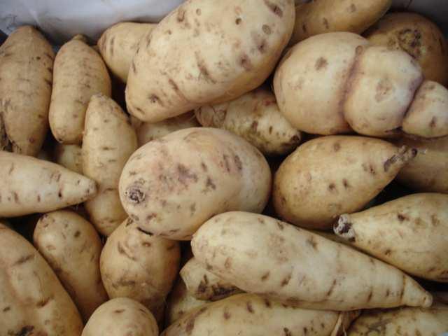 Polícia trava saída de 3,4 toneladas de batata para RDC