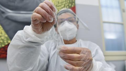 OMS investiga origem do vírus