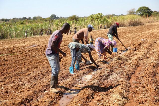 Falta de chuvas periga agricultura familiar
