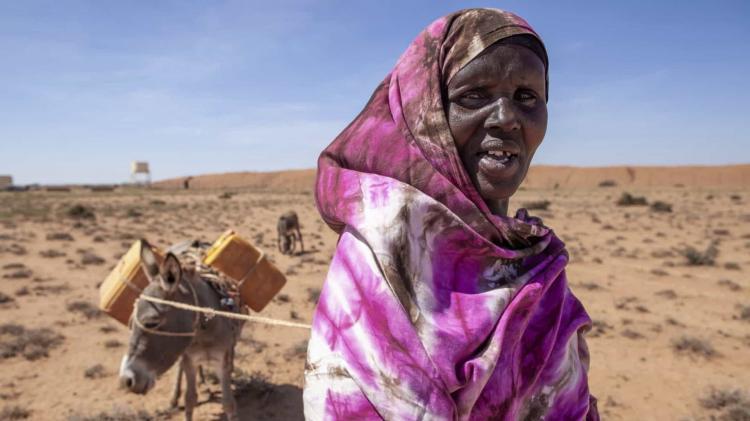 Cerca de 2,7 milhões de pessoas em risco de fome