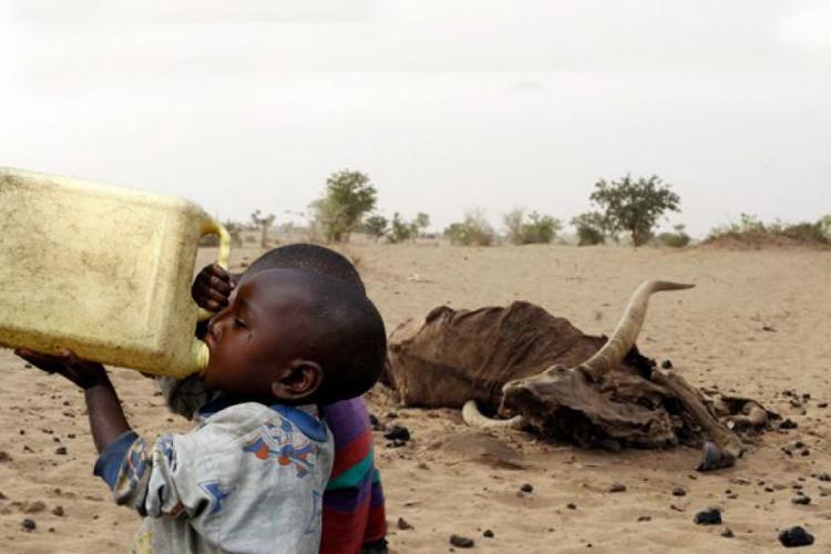 Milhões de pessoas em risco de vida no Sul devido à seca